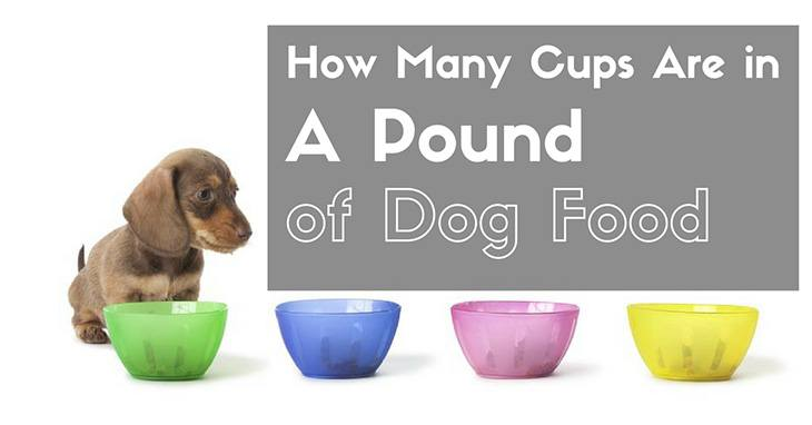 how many cups are in a pound of dog food photo - 1