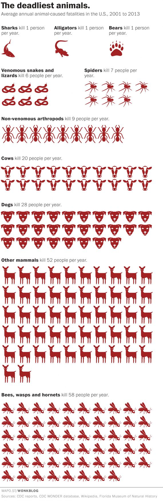 how many animals are slaughtered each day photo - 1