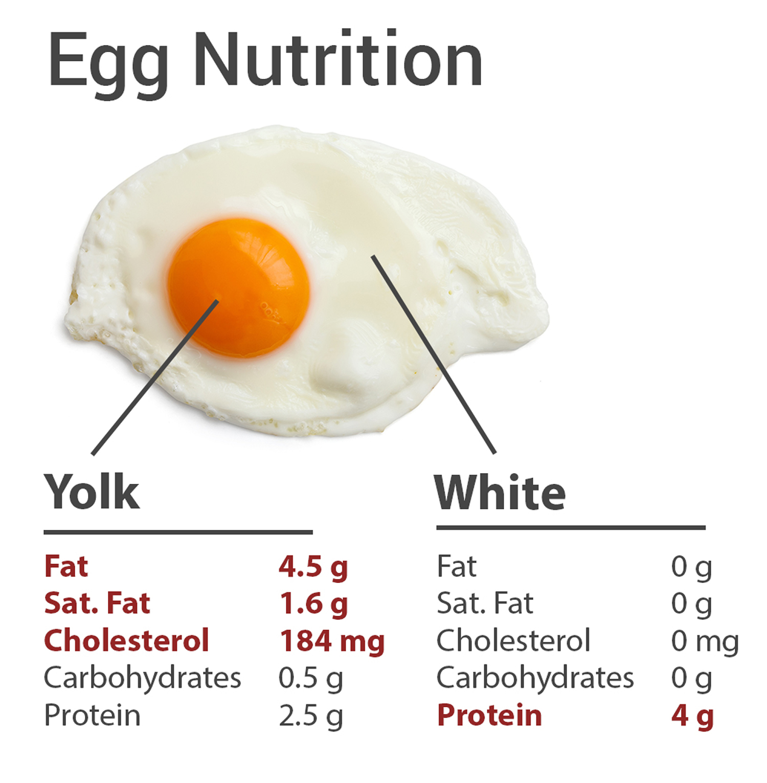 how many calories in hard boiled egg white photo - 1