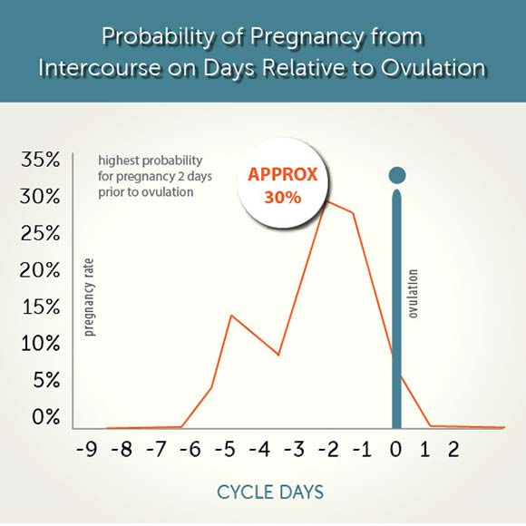 how many days after conception can you test photo - 1