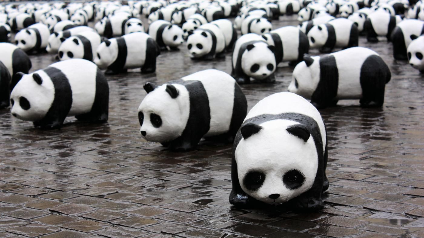 how many pandas are left in the world photo - 1