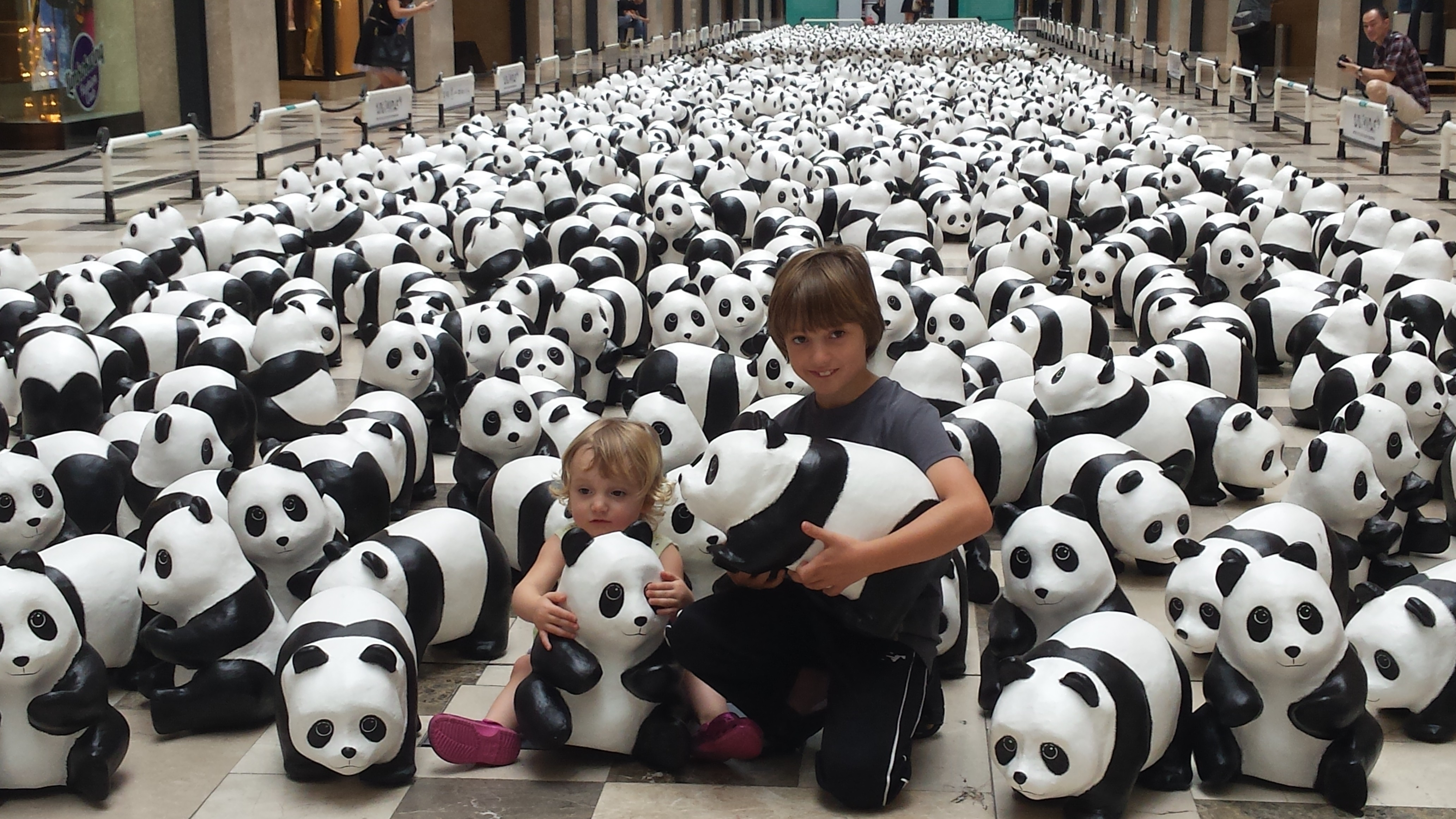 how many pandas are left in the world today photo - 1
